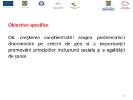 Proiectul Feminis -